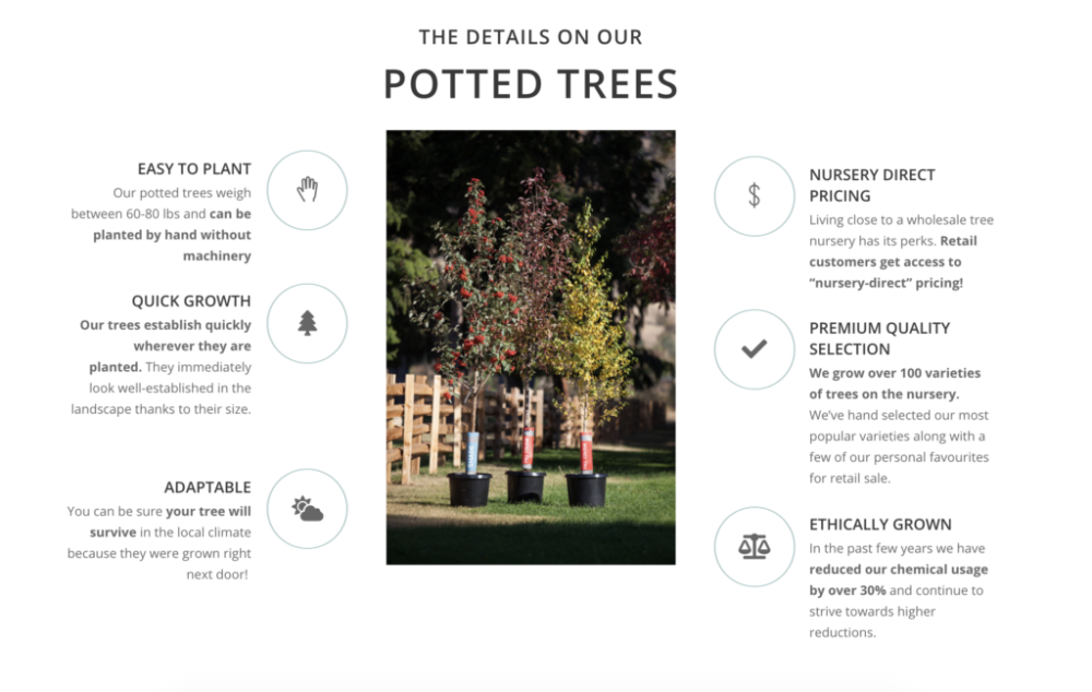 buy a potted tree in Armstrong BC