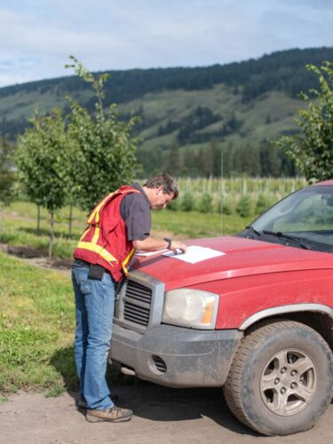 man reads about weeds on a tree nursery in BC
