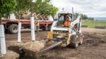 Machine operator uses skidsteer to load a burlap and basket tree onto a truck