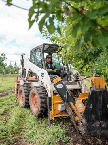 Machine operator uses a leemar tree spade to dig a tree at a tree nursery in Armstrong BC
