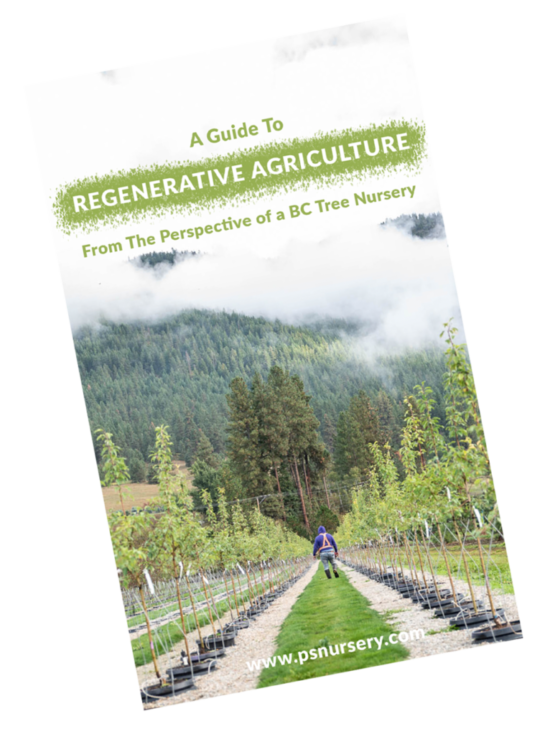 a guide to regenerative agriculture